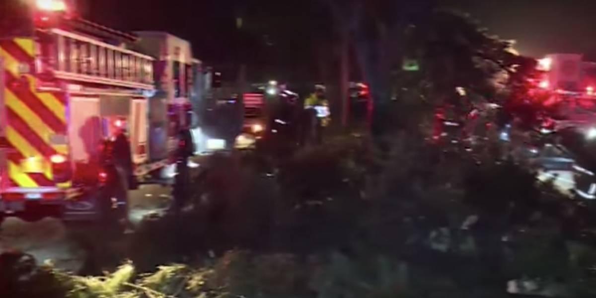 Conductor se salvó de la muerte después de que le cayera un árbol, en el norte de Bogotá