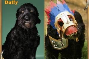 Já Duffy preferiu se fantasiar de Raptor