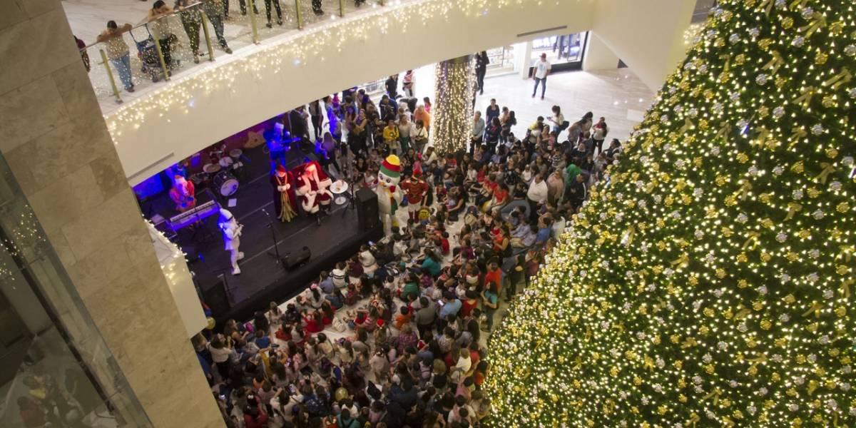 Guayaquil enciende sus árboles navideños