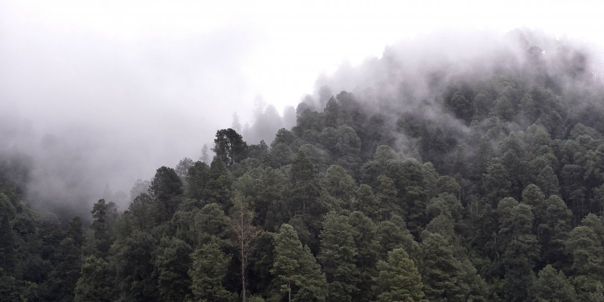 Frente frío 15 y segunda tormenta invernal causarán lluvias en el país