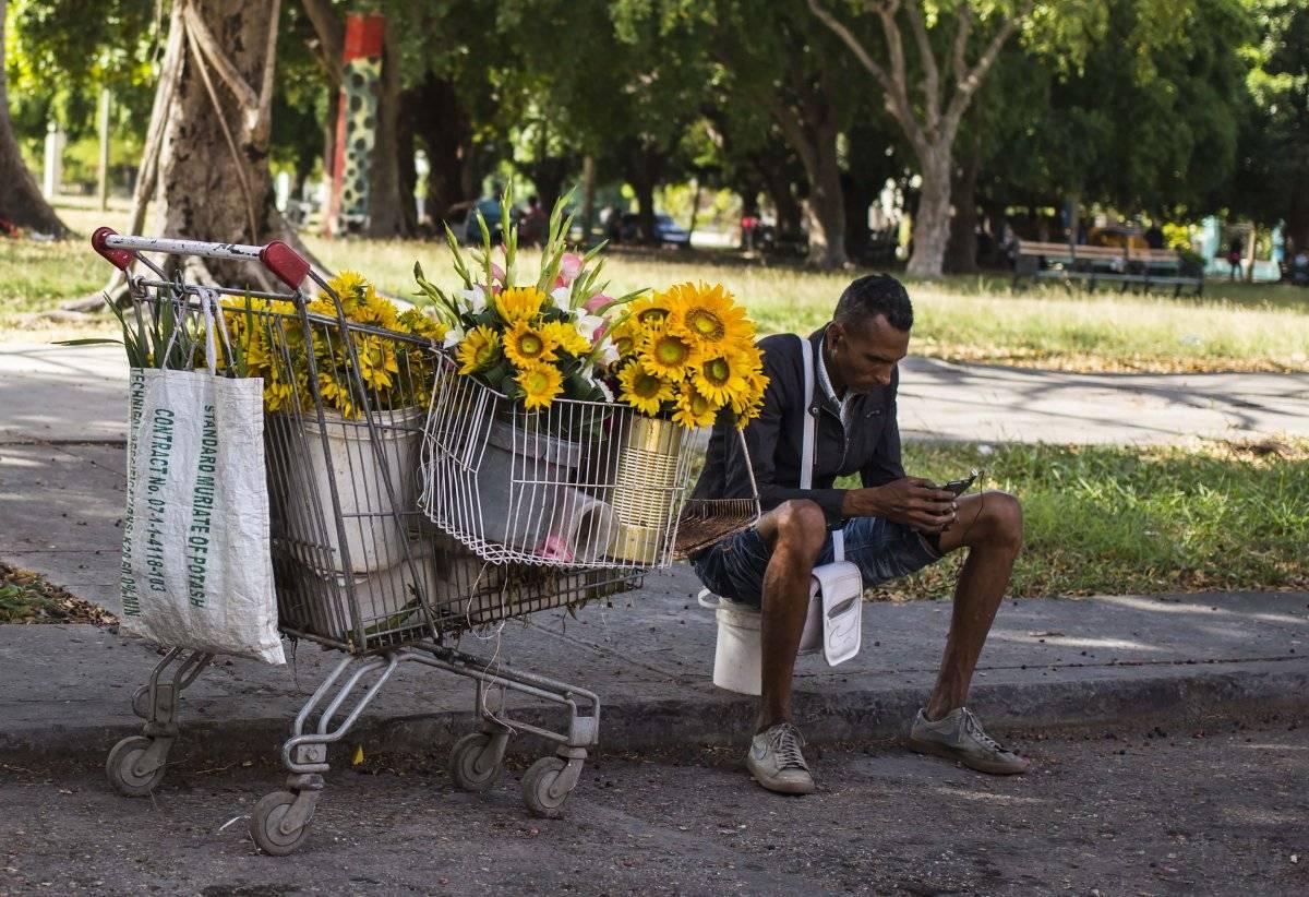 Un vendedor de flores se toma un descanso para navegar en internet con su teléfono móvil en La Habana, Cuba, el 6 de diciembre de 2018. (AP Foto/Desmond Boylan)