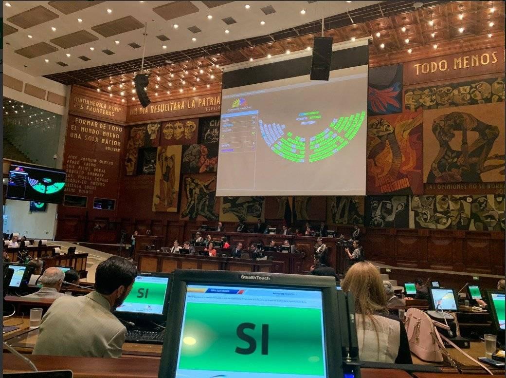 Asamblea aprueba renuncia de María Alejandra Vicuña Twitter