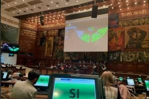 Asamblea aprueba renuncia de María Alejandra Vicuña