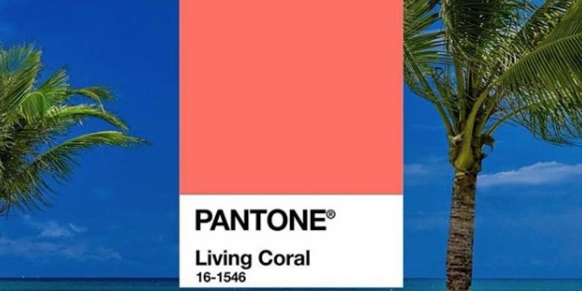 Pantone anuncia 'Living Coral' como cor de 2019