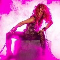 Shakira vende los derechos de 145 canciones