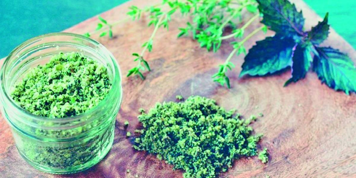 Mix de ervas ajuda a reduzir o sal no dia a dia