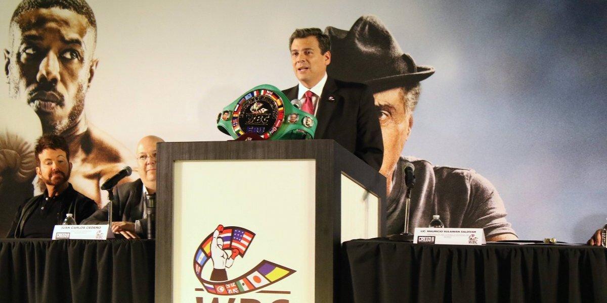 Sulaimán reconoce que 'Canelo' es firme candidato a ser el 'boxeador del año'