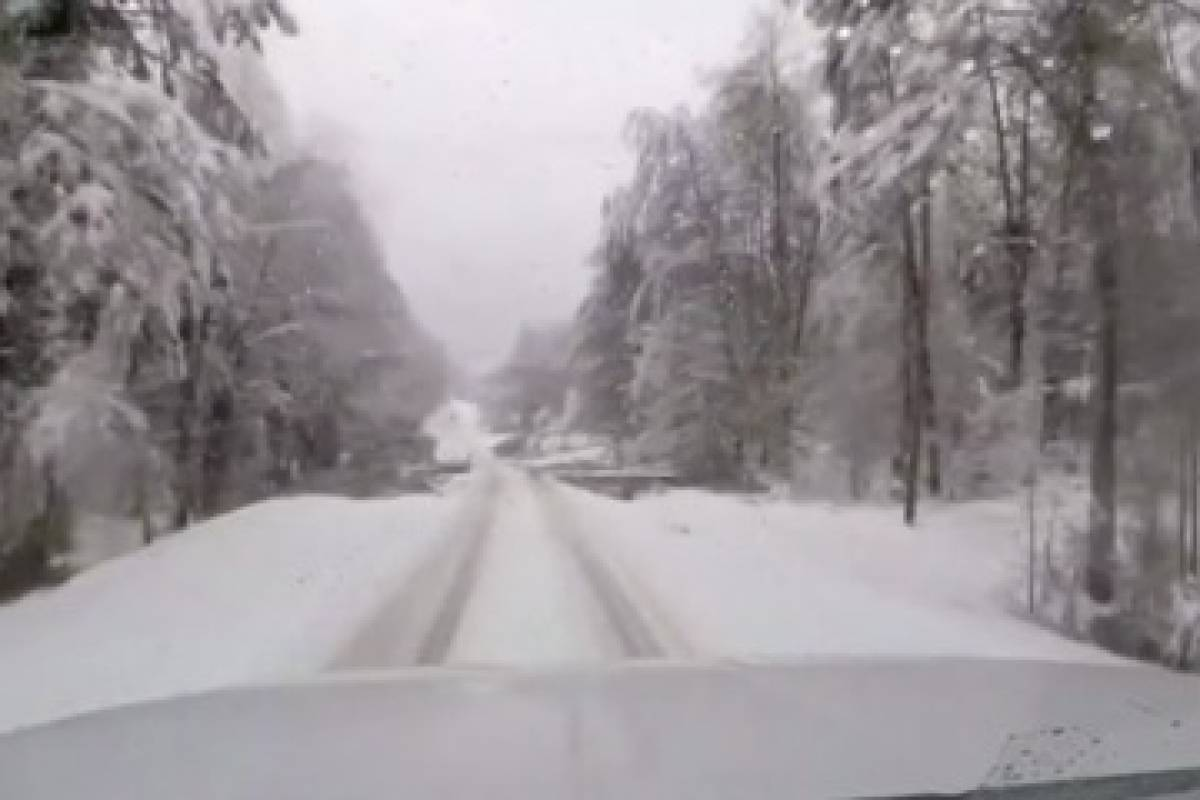Tormenta de nieve Diego afecta cadena de suministros en el Sureste