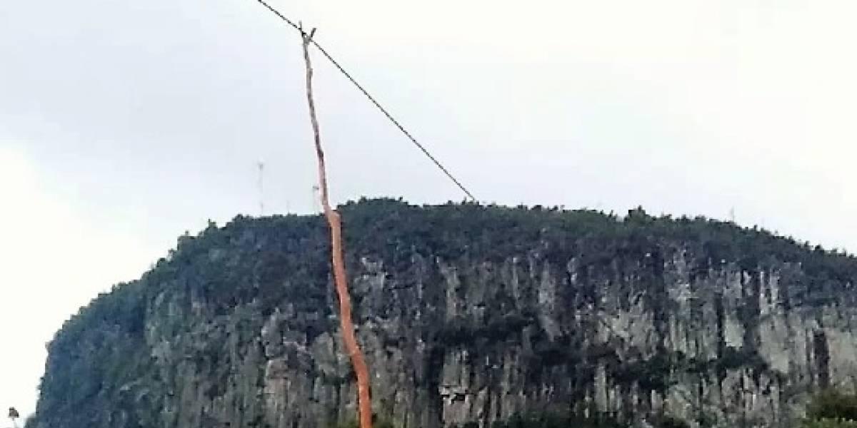 """""""Colgando de un palo"""": Así está la fibra óptica en algunos lugares de Chile"""