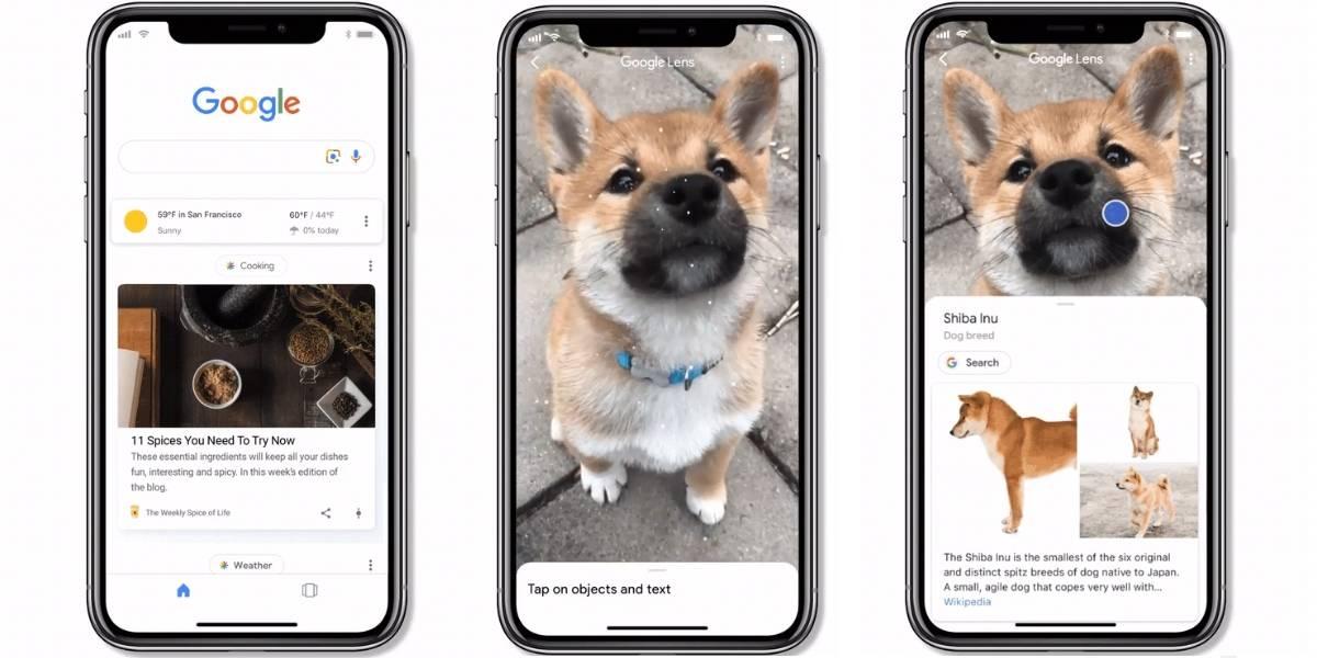 Google Lens al fin se integra por completo a iOS