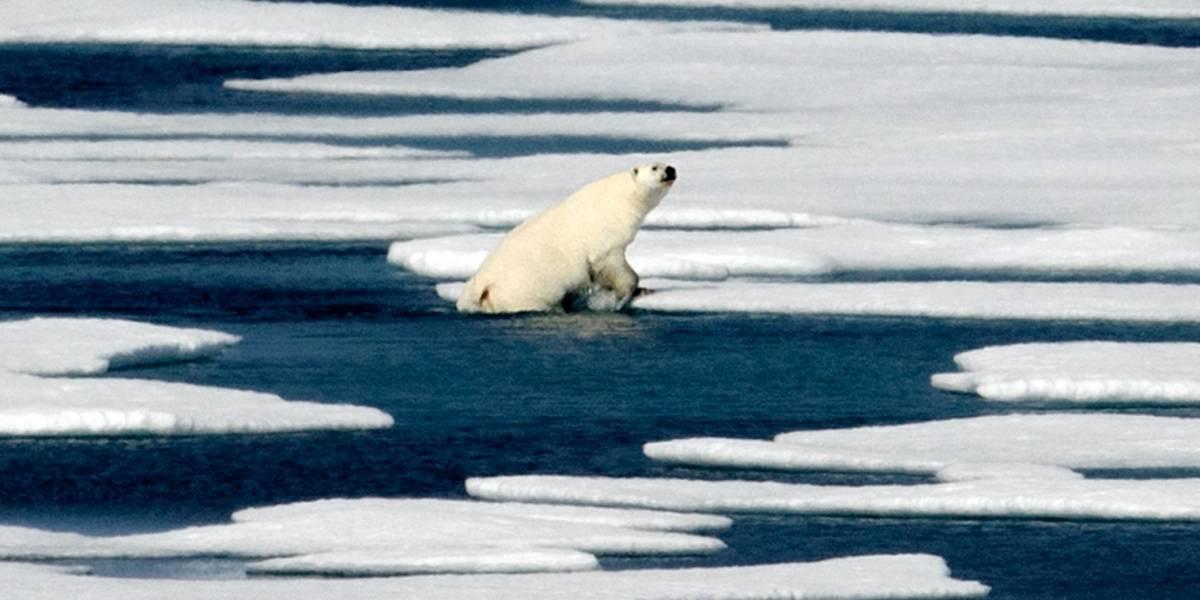Inesperado derretimiento de hielo en Antártida y Ártico