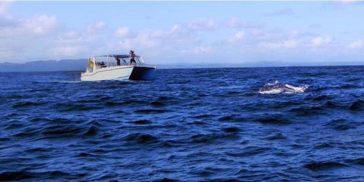 Bahamas liberará a 45 pescadores dominicanos en enero próximo