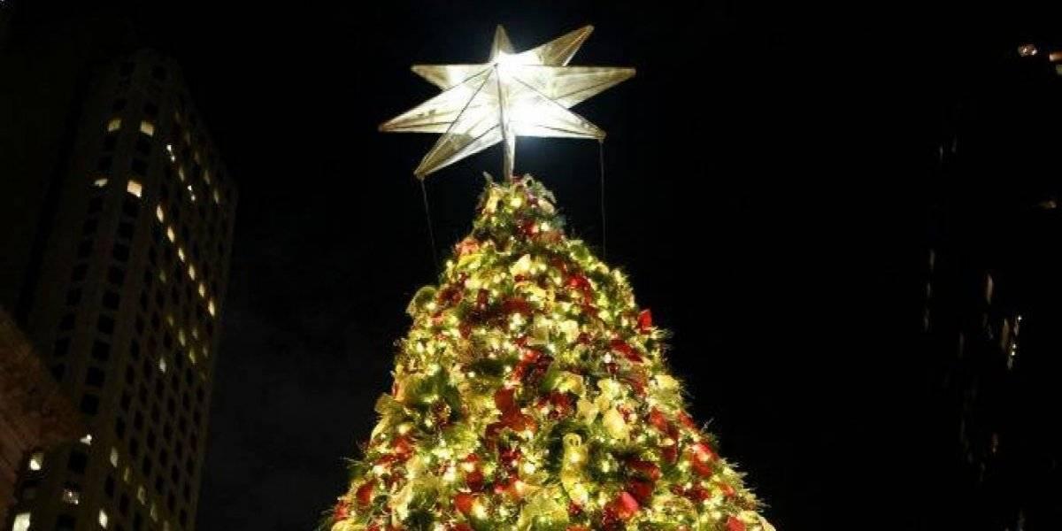 ¡Una solución navideña! Hombre coloca árbol de navidad para tapar agujero en la calle