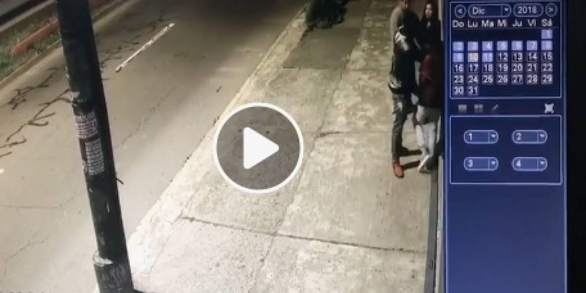 VIDEO: Cámaras de seguridad captan asalto de jóvenes en Quito