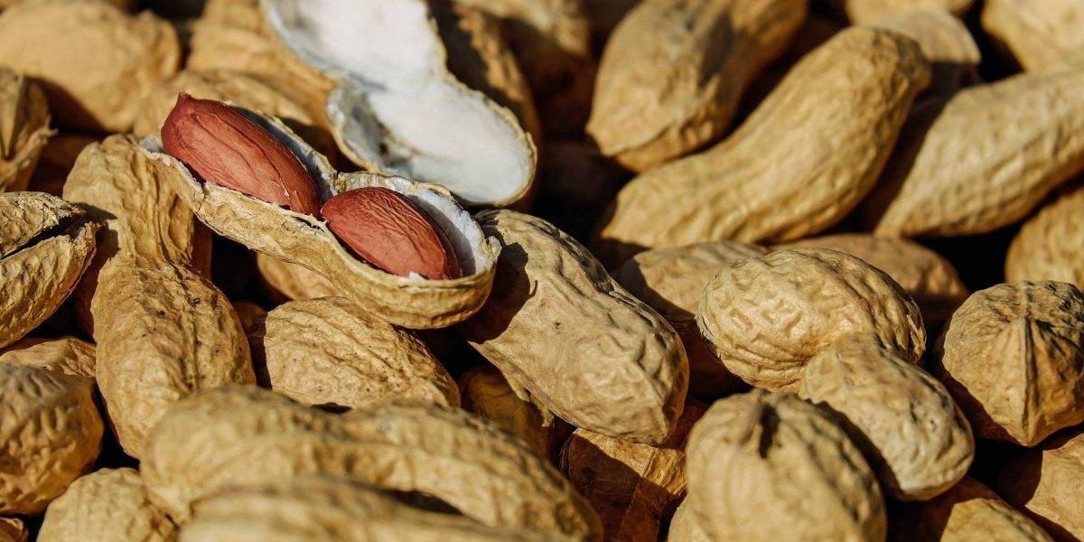 Muito cuidado! Estes são os alimentos que causam as alergias mais comuns