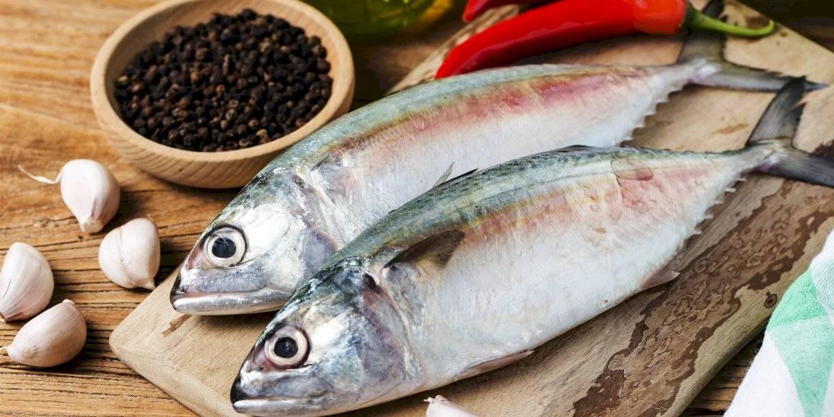 Confira lista de comidas com Vitamina D importantes para manter as recomendações diárias