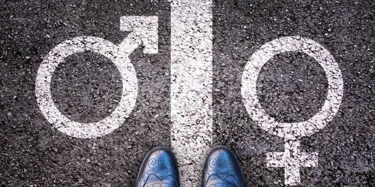 """Parlamento alemán aprueba la creación de un tercer género: las personas podrán identificarse como """"diverso"""""""