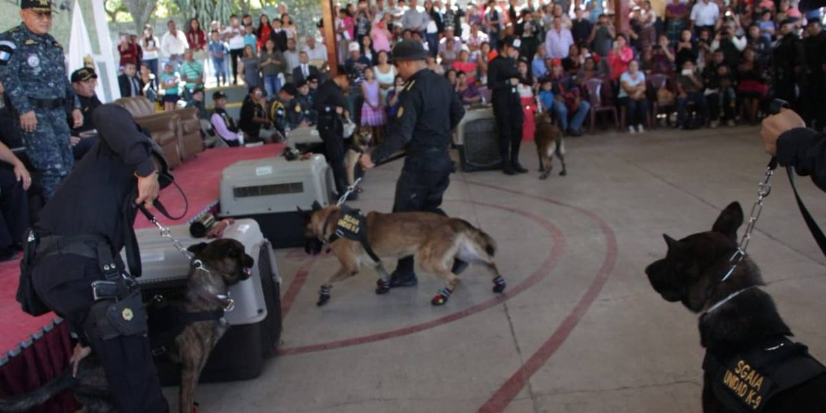 Se gradúan profesionales antinarcóticos y EE. UU. dona 10 agentes caninos