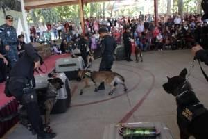 Agentes caninos son donados
