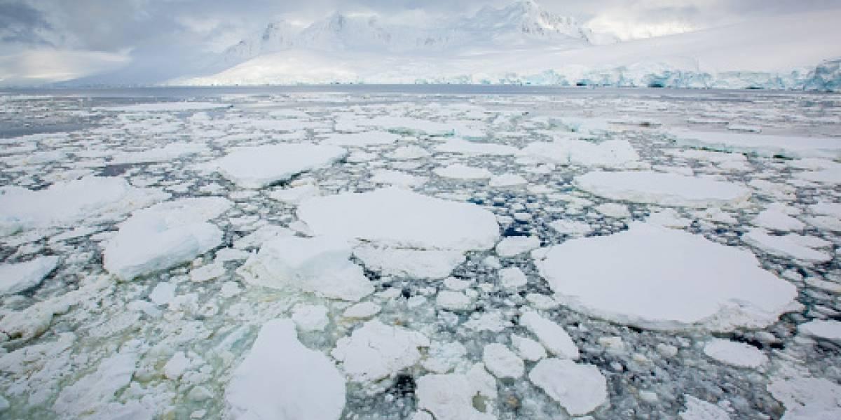 Decenas de ciudades bajo el agua y devastadoras consecuencias en el mundo: ¿Qué pasaría si todo el hielo de la Tierra se derritiera?