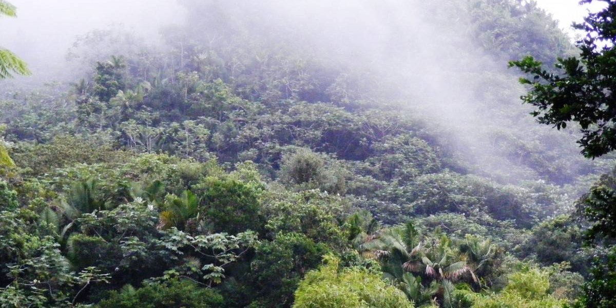 Baja bastante el termómetro en Puerto Rico