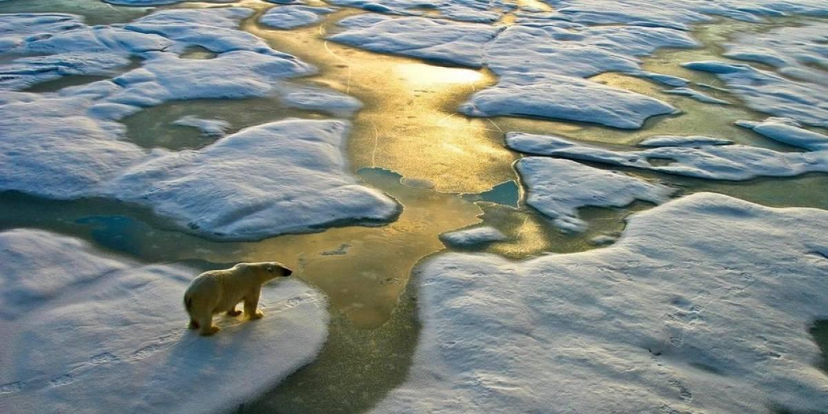 Mudanças climáticas: por que imagens sem seres humanos não são as mais adequadas para ilustrar as causas do aquecimento global