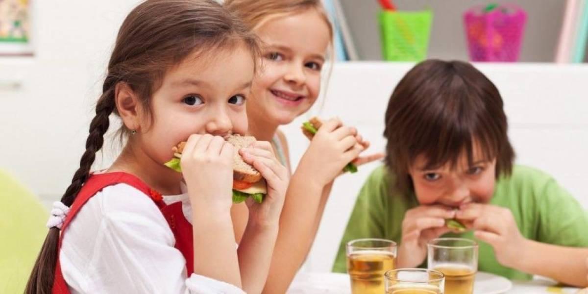 Cinco sándwiches nutritivos para llevar a la escuela