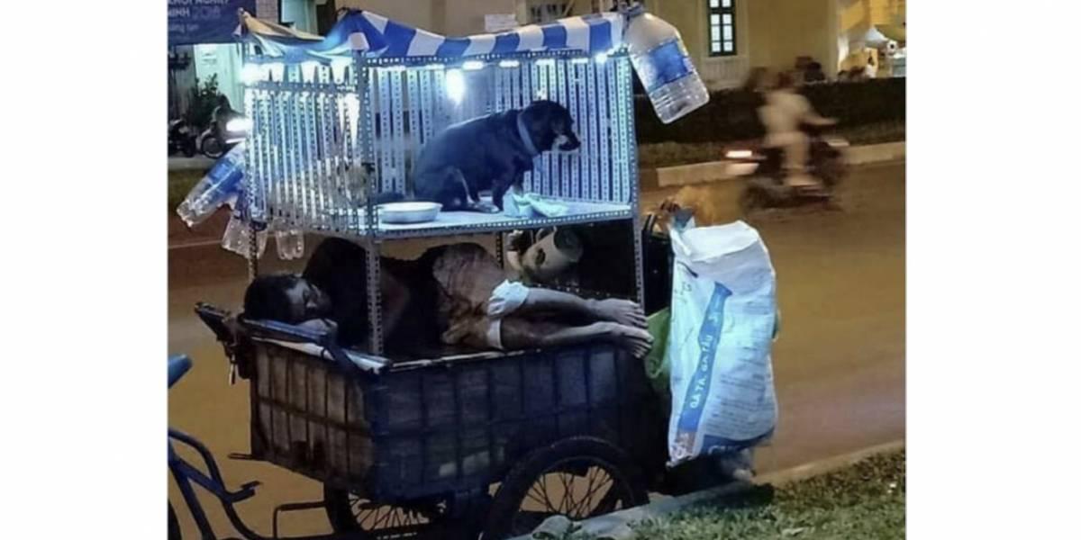 La foto del habitante de calle junto a sus dos perritos que conmueve las redes sociales