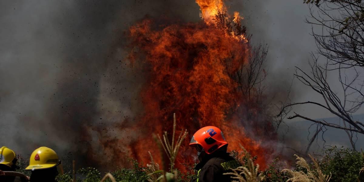 Por culpa de las altas temperaturas: declaran alerta preventiva en la Región Metropolitana por riesgo de incendios forestales