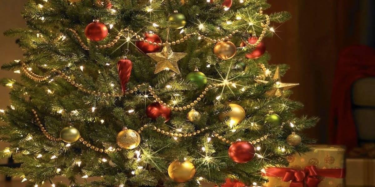El origen del árbol de navidad (video)