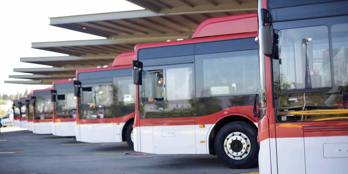 Regalo de Navidad para el Transantiago: los 17 nuevos buses eléctricos que se estrenan este lunes en las calles