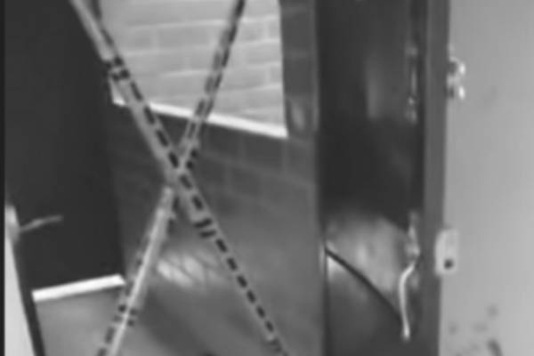 Nuevos detalles del día en que un joven decapitó a su padrastro y lo lanzó por una ventana