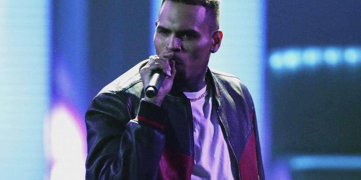 Cargos contra Chris Brown por poseer un mono