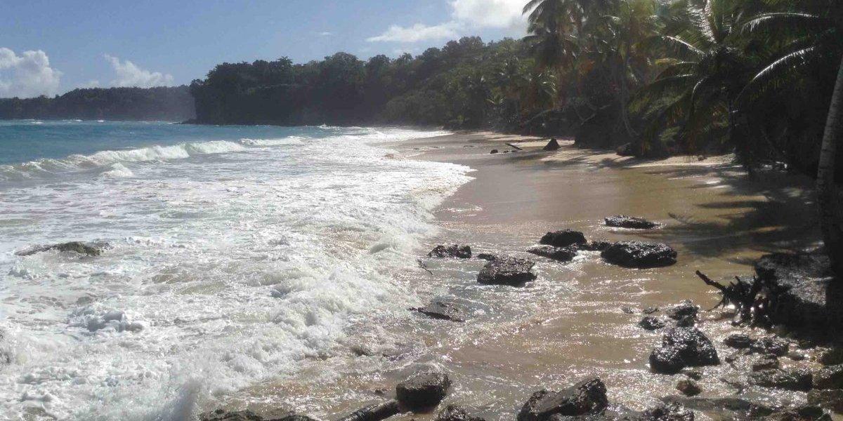 Cultura confirma extracción irregular bienes arqueológicos en Playa Preciosa