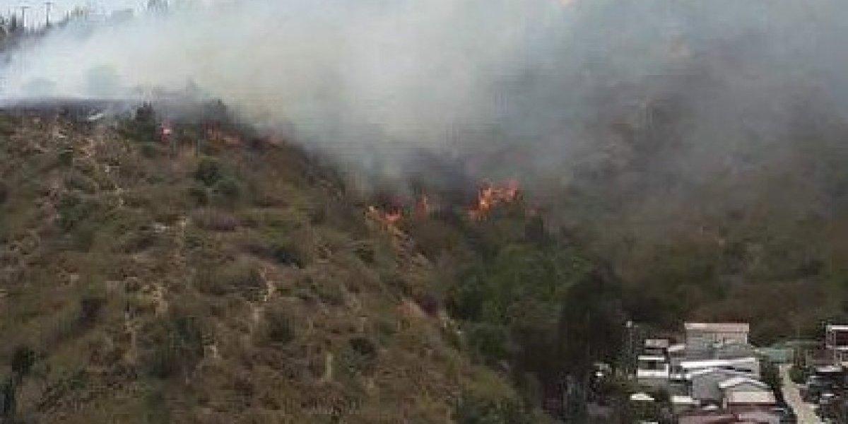 Balance de la Conaf: 44 incendios forestales: 15 activos, 19 controlados y 10 apagados