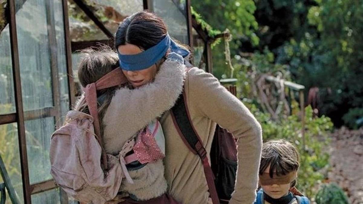 Bird Box Internet