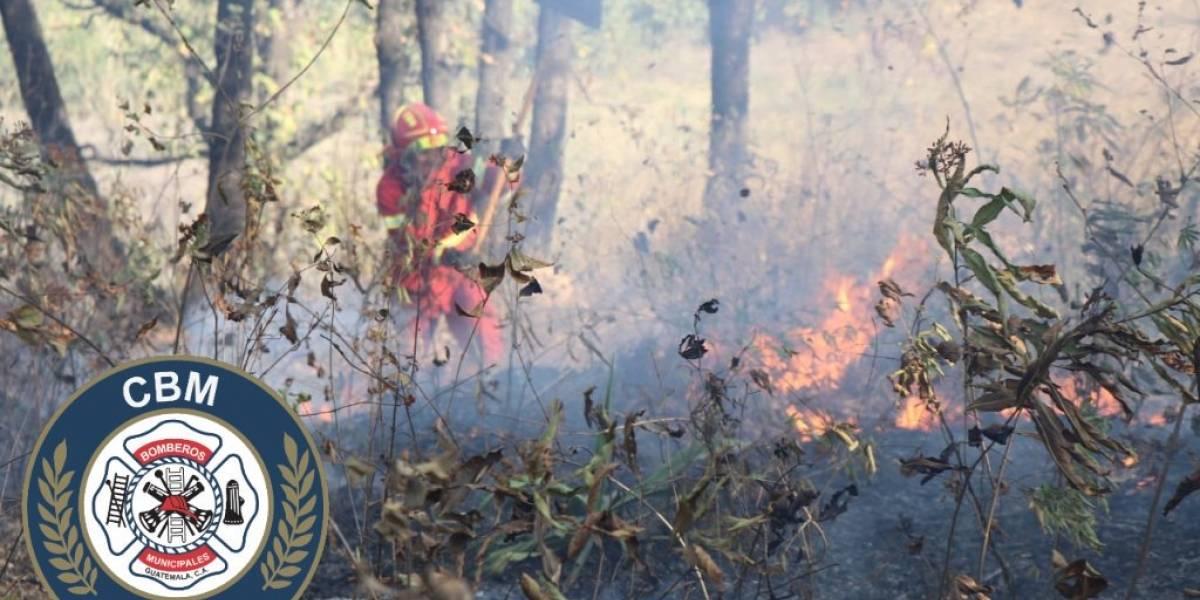 Evitan que incendio forestal en ruta al Atlántico se expanda a viviendas