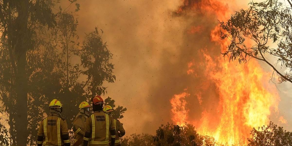 Conaf reporta 14 incendios forestales activos en el país en plena ola de calor