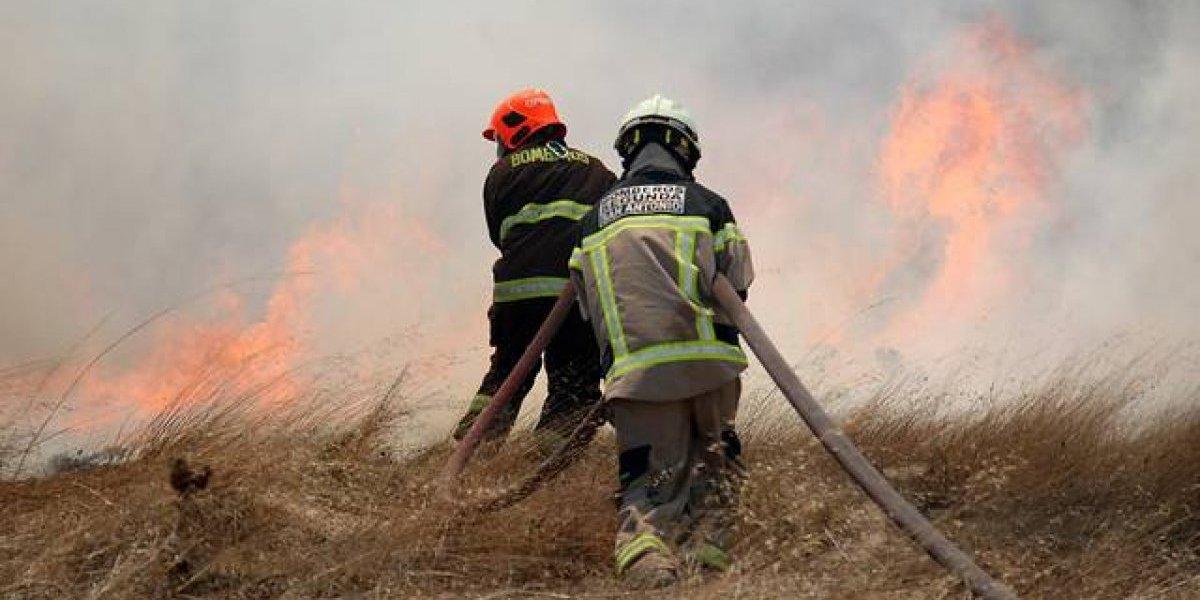 Fiscalía investiga cables en mal estado como causantes de incendios forestales en Navidad