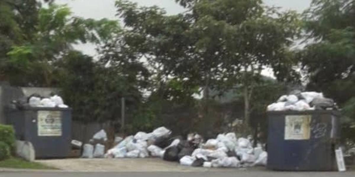 Denuncian basura arropa varias comunidades de Guaynabo