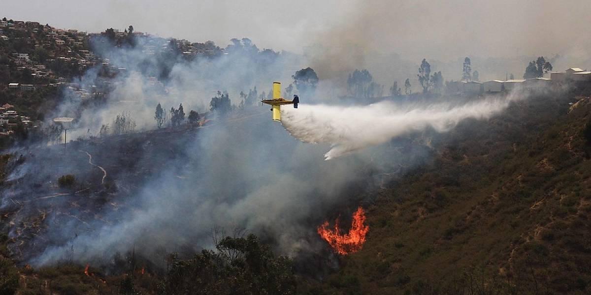 Cuatro incendios forestales activos afectan al país: siniestro de Santo Domingo supera las 1.800 hectáreas arrasadas por el fuego