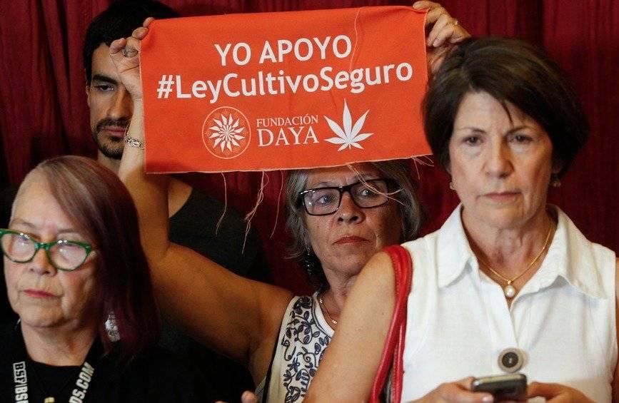 Proyecto marihuana