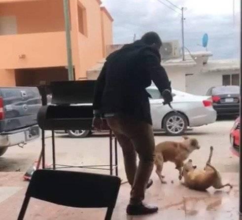 Hombre apuñala a perro en Piedras Negras