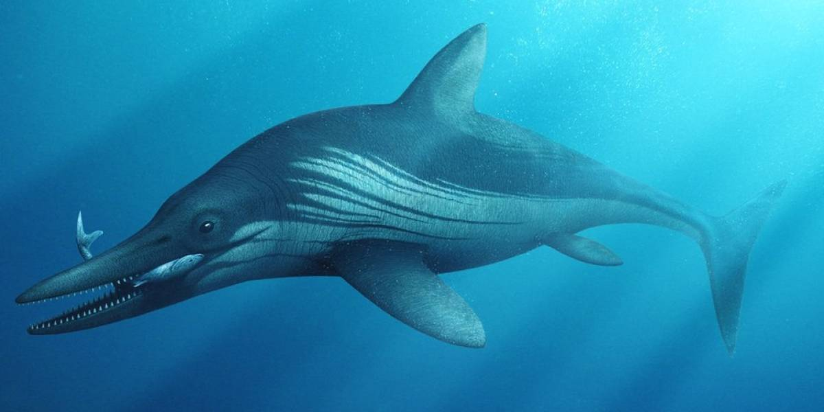 Logran reconstruir la aparariencia de un imponente monstruo marino prehistórico