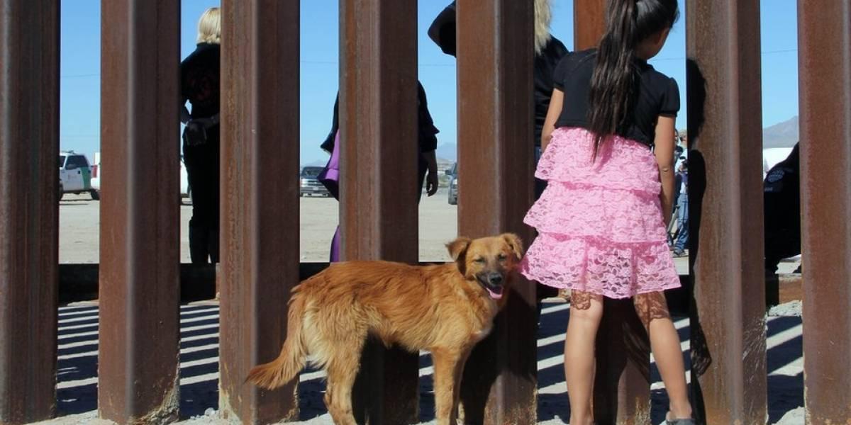 Há uma crise humanitária na fronteira entre EUA e México? O que os números dizem