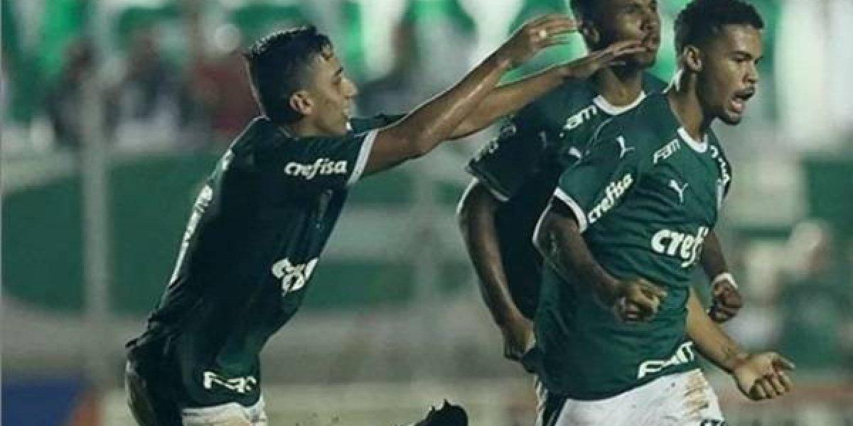Copa São Paulo 2019: onde assistir ao vivo online o jogo Palmeiras x Galvez pela terceira fase