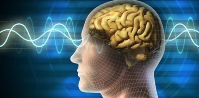 Ciencia controla ira