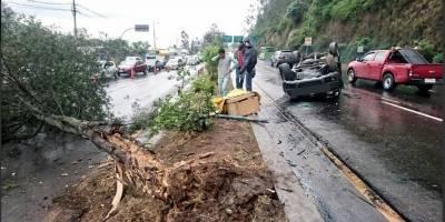 Fuerte choque de un vehículo contra un árbol en la Simón Bolívar
