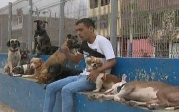 """Envenenan y matan a nueve canes del famoso""""Domador de Perros"""" en Perú Captura de pantalla"""