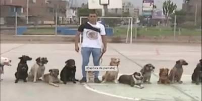 """Envenenan y matan a nueve canes del famoso""""Domador de Perros"""" en Perú"""